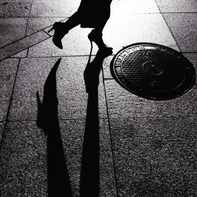Canvas print chasing shadow