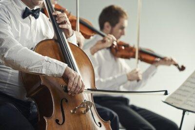 Canvas print Classical music concert
