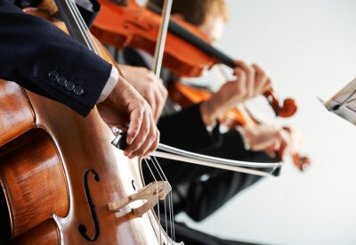 Canvas print Classical music: concert