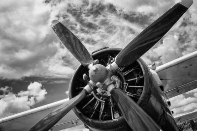 Canvas print Close up of old airplane in black and white
