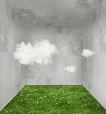 Canvas print Clouds and grass in a room