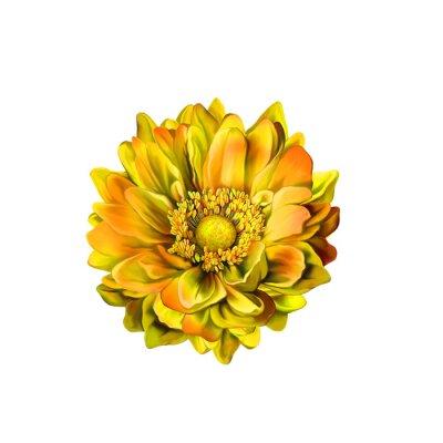 Canvas print Colorful Mona Lisa flower, Spring bloom