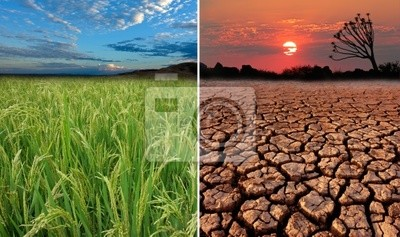 Conceptual images of global warming