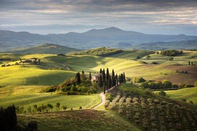 Canvas print Countryside near Pienza, Tuscany, Italy