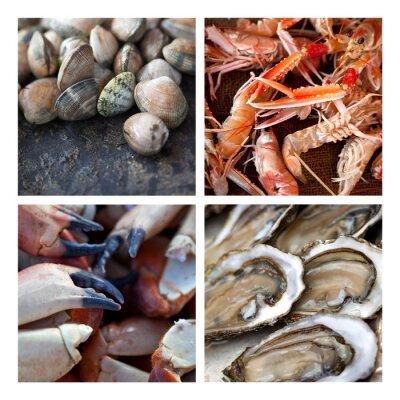 Canvas print Crustacean shellfish seafood tide fishing