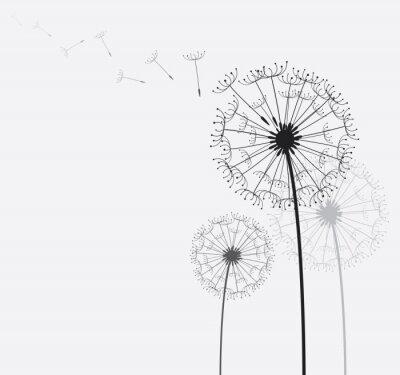 Canvas print Dandelion / Dandelion in the wind