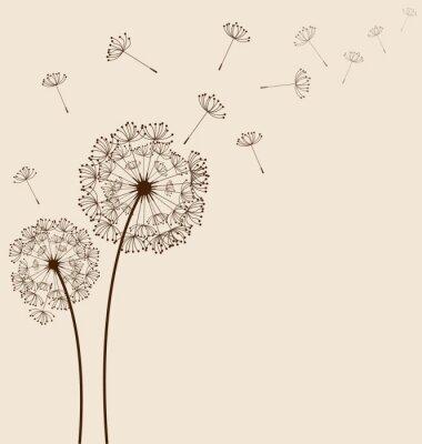 Canvas print Dandelions background vector