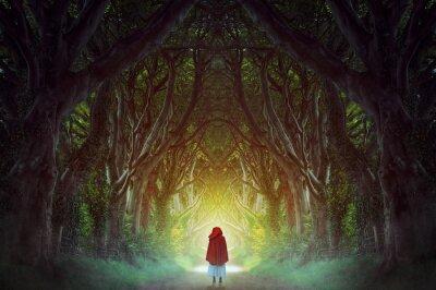 Canvas print Dark forest road