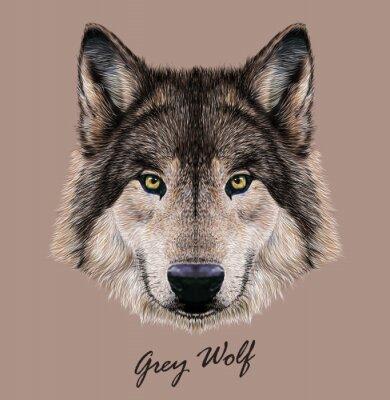 Canvas print Digital vector Illustration Portrait of a Wolf.
