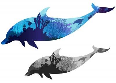 Canvas print dolphin