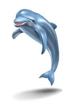 Canvas print Dolphin Jump