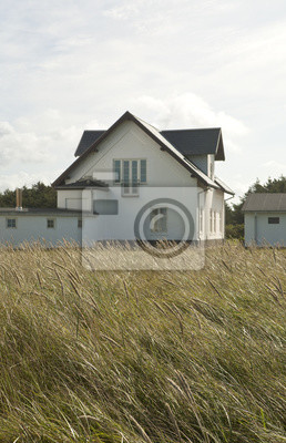 Dune Grass with Cottage. Dune grass waves in the wind and sets up a pattern of lines with the stems and the seed heads.