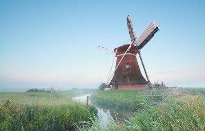 Canvas print Dutch windmill in morning light