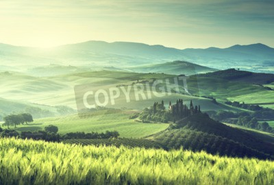 Canvas print Early spring morning in Tuscany, Italy