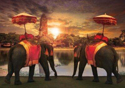 Canvas print elephant dressing with thai kingdom tradition accessories standi