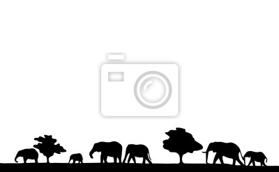 Elephant Silhouette with trees