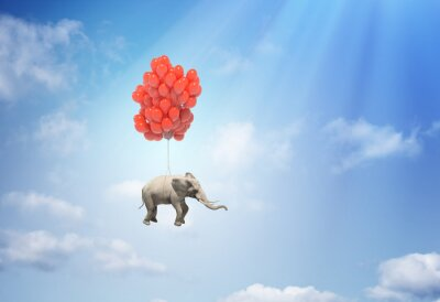 Canvas print Elephant with balloons