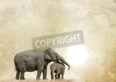 Canvas print elephants on a grunge background
