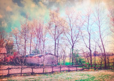 Canvas print Enchanted countryside series