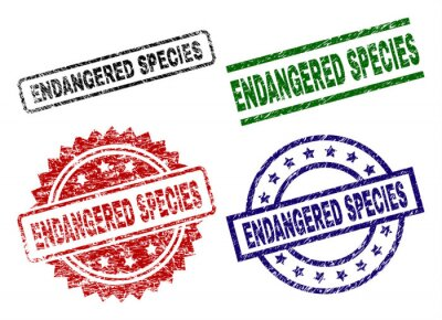 Canvas print ENDANGERED SPECIES seal prints with distress surface. Black, green,red,blue vector rubber prints of ENDANGERED SPECIES caption with retro surface. Rubber seals with circle, rectangle, rosette shapes.