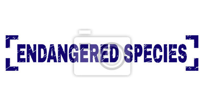 Canvas print ENDANGERED SPECIES text seal print with distress style. Text caption is placed inside corners. Blue vector rubber print of ENDANGERED SPECIES with scratched texture.