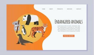 Canvas print Endangered vanishing wildlife animals website vector template. Amur tiger, panda, penguin, sea seal and koala cartoon illustration save rare endangered animals website or zoo web page.