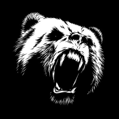 Canvas print engrave bear illustration