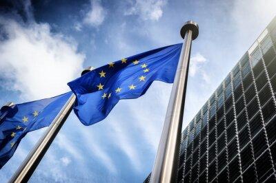 Canvas print European Union flags