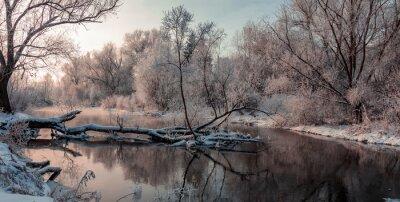 Canvas print fantastic winter landscape