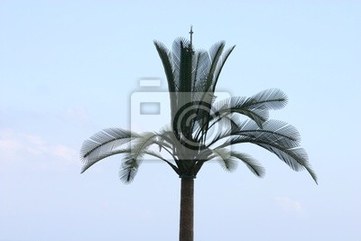 Canvas print faux palmier