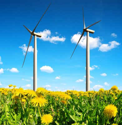 Canvas print Field of dandelions with wind turbines. Clean energy.