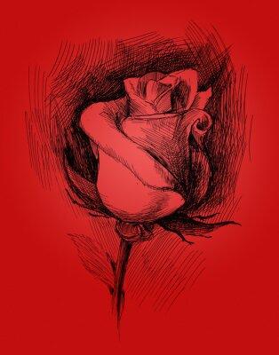 Canvas print flower sketch