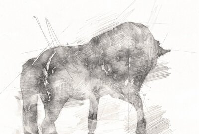 Canvas print freehand horse head pencil drawing