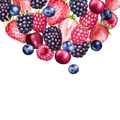 Fresh berries watercolor background. Colorful fruits illustration. Strawberry, raspberry, blueberry and blackberry.