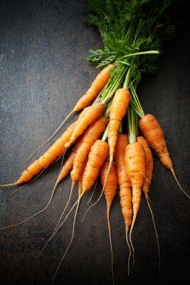 Canvas print Fresh carrots