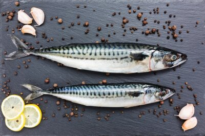 Canvas print Fresh mackerel fish on a slate cutting board. Top view