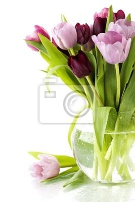 Canvas print fresh tulips