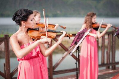 Canvas print Girls plays violin