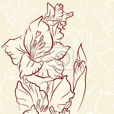 Gladiolus flower vector illustration