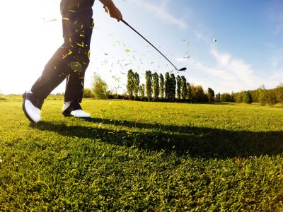 Canvas print Golfer performs a golf shot from the fairway.
