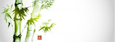 Green bamboo trees on white background. Traditional Japanese ink wash painting sumi-e.  Hieroglyph- eternity