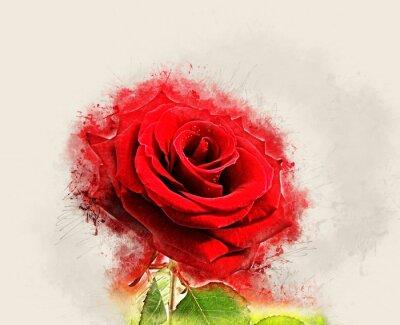 Canvas print Grunge Rose image