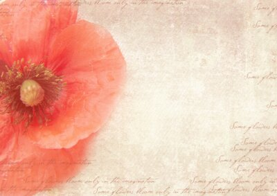 Canvas print Grungy retro background with poppy flowers. A vintage styled collage with poppy flowers, faded handwriting on shabby old paper.  Postcard template.