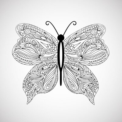 Canvas print Hand drawn doodle butterfly