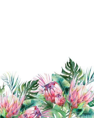 Canvas print Hand drawn greeting card design with exotic leaves and protea flowers isolated on white background. Palm tree, banana leaves, mostera plants
