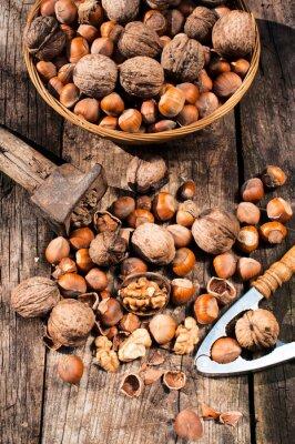 Canvas print Hazelnuts and walnuts
