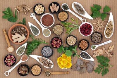 Canvas print Healing Herbs for Women