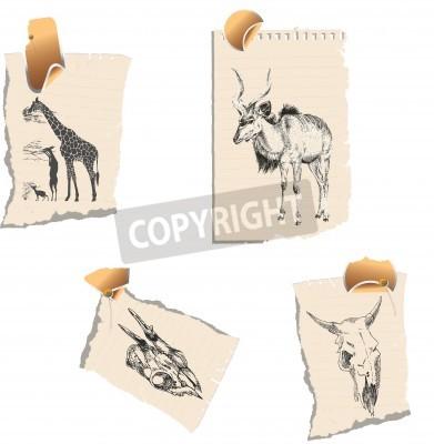 Canvas print herbivores