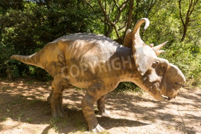 Canvas print Herbivorous dinosaur with horns to defend themselves from predators