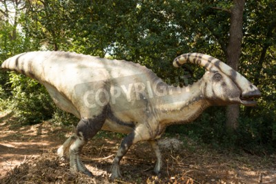 Canvas print Herbivorous dinosaur with the horn that emits sounds in the forest